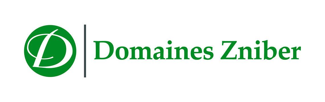 6-1_DOMAINES-ZNIBER_RefonteLogo_280318